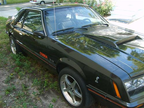 Angelo Carrillo's 1979  Ford 5.0L 302cc Cobra Fox Body