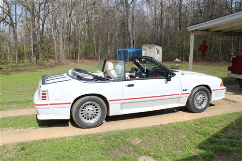 Ashley McAfee's 1989 Ford Mustang GT Convertible