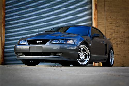 Chris Arnold's 2004 Ford  Mach 1