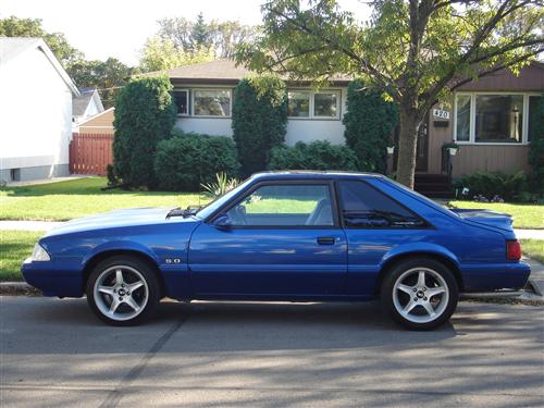 Chris Bird's 1987 Ford Mustang