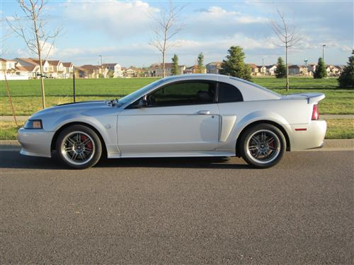 Christopher Rowcliffe's 1999 Ford Mustang GT