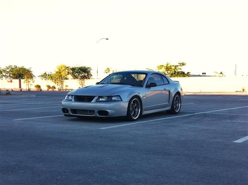 Codi Papamichael's 2000  Ford Mustang GT