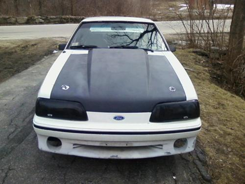 dave c's 1989 ford mustang