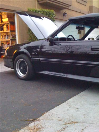 David Gangi's 1988 Ford Mustang GT convertible