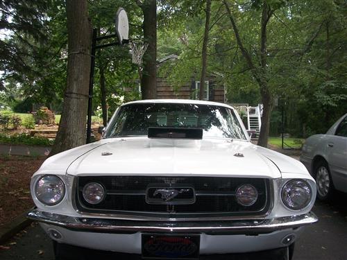 David Somley's 1967 Ford mustang fastback gt