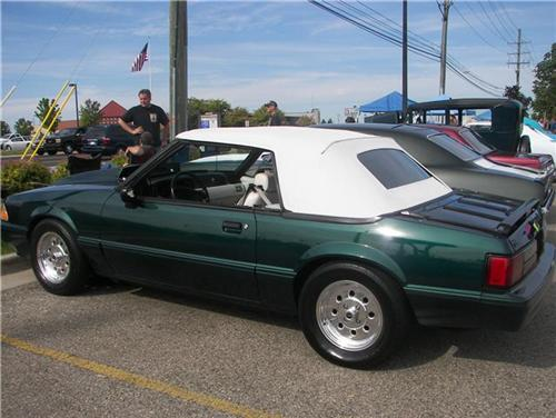 Frank Orlando's 1990 Ford Mustang