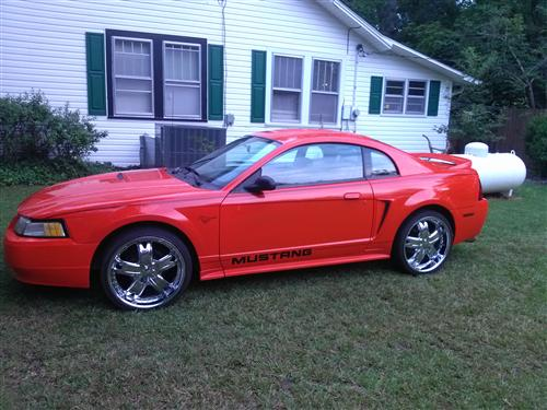 Jamie  Ingle 's 2000 Ford Mustang
