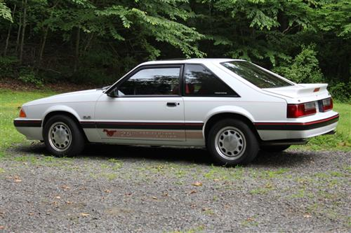 John King's 1989 Ford Mustang 5.0 LX (Carolina Ford Dealers Edition)