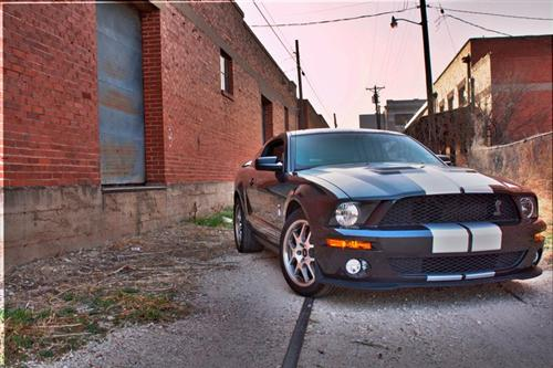 kelley jennings' 2009 ford Shelby GT500
