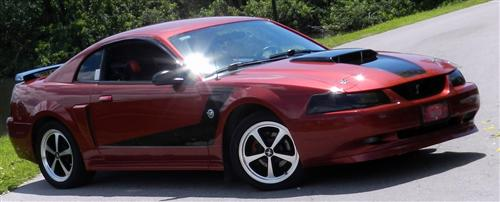 kellie moore's 2004  Ford mustang 40th
