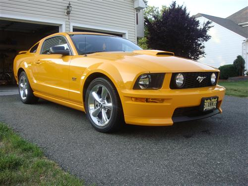 Lee Lipscomb's 2007 Ford Mustang