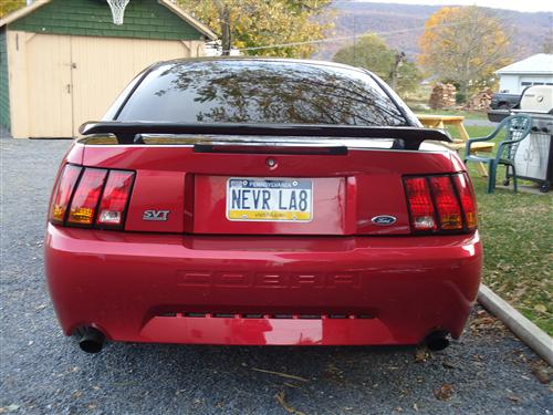Nancy Eby's 1999 Mustang Cobra