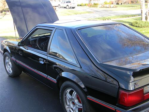 peter disalvo's 1988 ford mustang lx