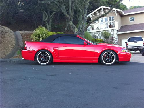 Sam Davis' 2003 Ford 10th anniversary cobra convertible