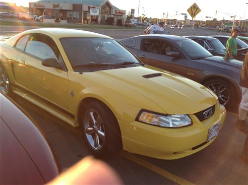 Sandy Cormier's 1999 Ford Mustang