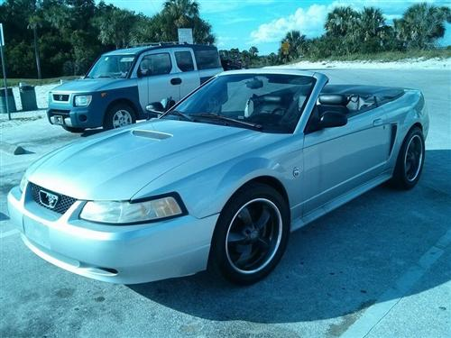 Sarah Pike's 1999 Ford Mustang