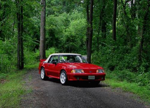 Shawn Kowalczyk's 1991 Ford Mustang GT