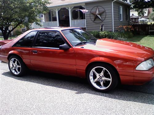 shelby ervin's 1988 ford mustang