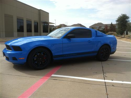 Tracy Bourdon's 2012 Ford Mustang